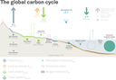 CarbonCycleSciPaperFinal.2